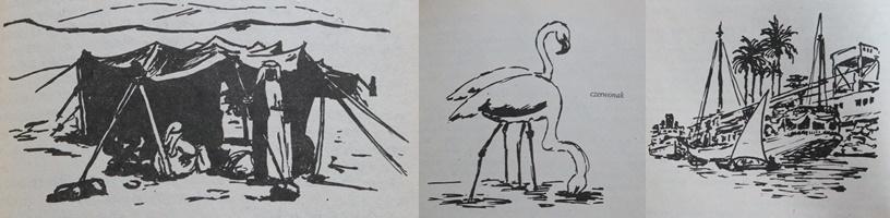 tomek w grobowcach faraonów - ilustracje