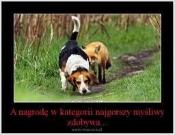 http://www.maciora.pl/wp-content/uploads/yapb_cache/1386286224_.96mmsvfmueckw8gwkok800g88.ekdjdxruf9s8k40s08o080wks.th.jpeg