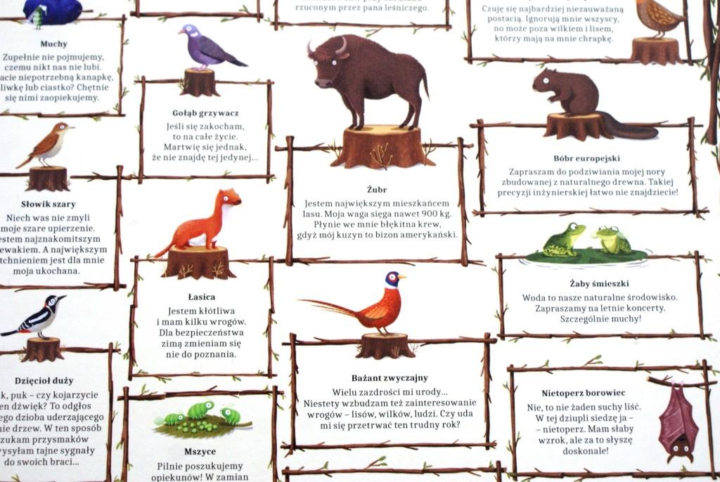 rok-w-lesie-opisy-1024x686 Rok w lesie - księga pór roku dla dzieci