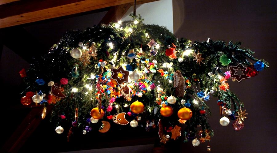 jemioła-1024x818 Przyroda a Boże Narodzenie