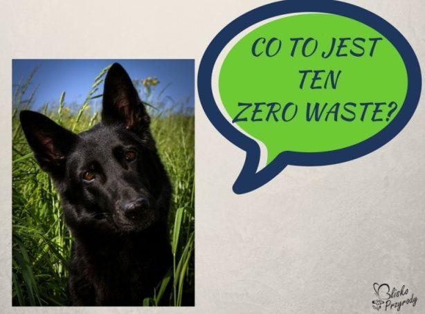 co to jest ten zero waste?