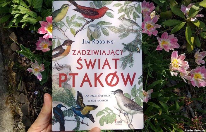 zadziwiający świat ptaków - okładka
