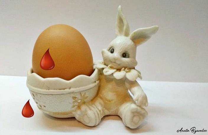 dlaczego-weganie-nie-jedza-jajek-klatki Dlaczego weganie nie jedzą jajek?