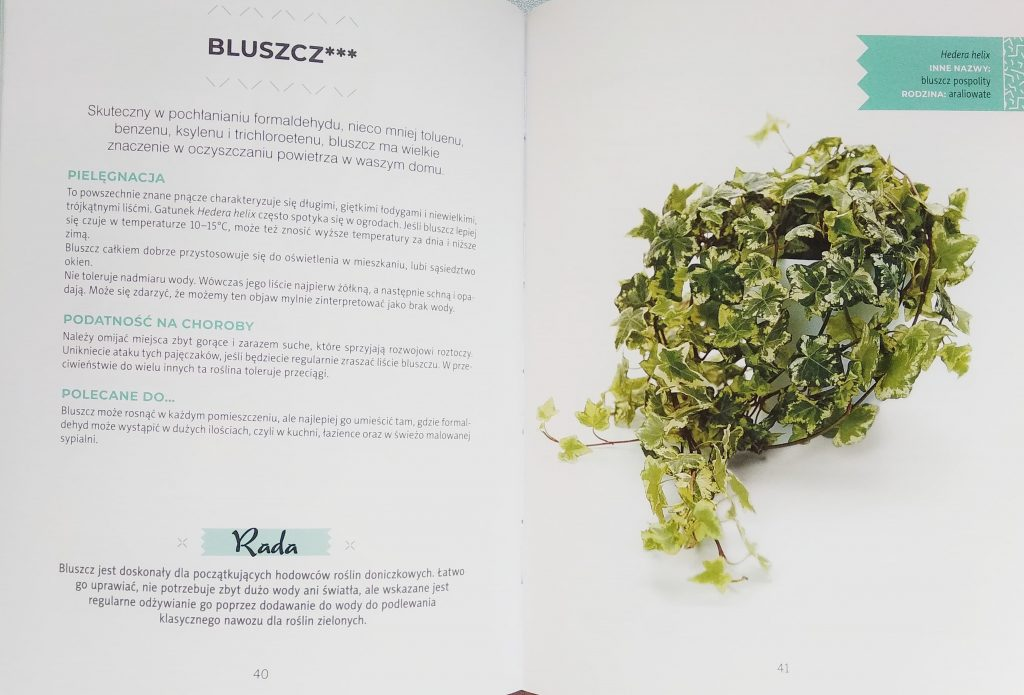 rosliny-oczyszczajace-powietrze-2-1 Rośliny oczyszczające powietrze - recenzja książki