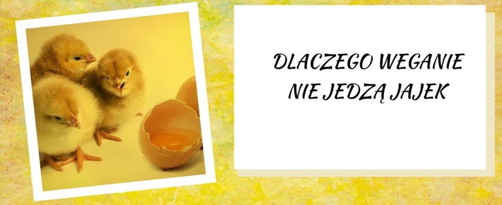 dlaczego weganie nie jedzą jajek?