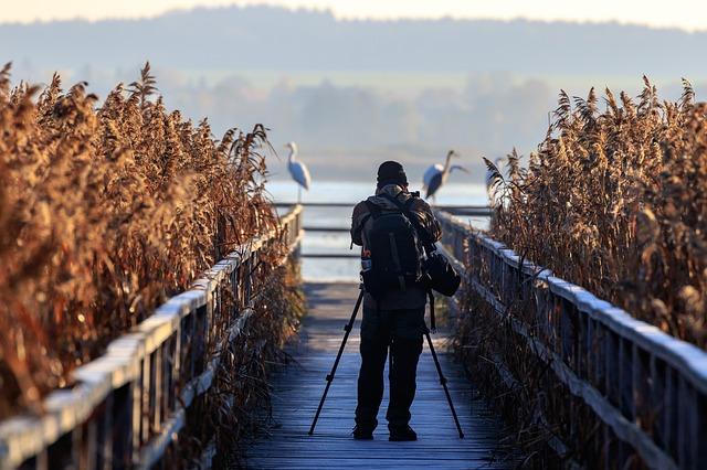 praca dla biologa - fotograf przyrody