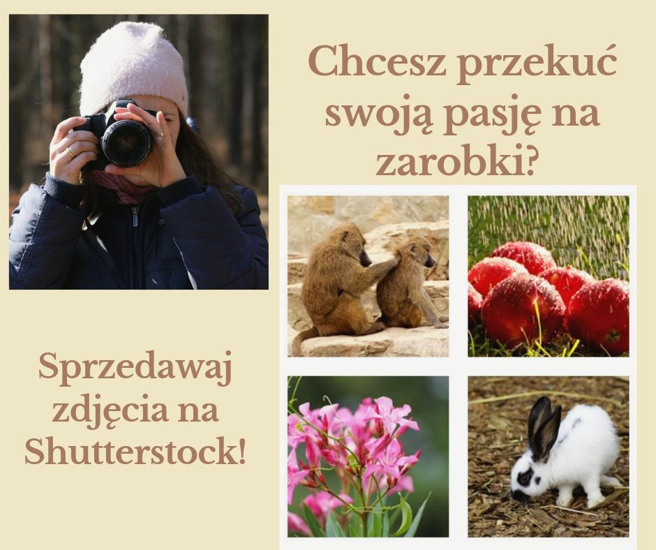 """fotografowanie-polskiej-przyrody-zdjecia-Bobrowicz-1024x799 """"Fotografowanie polskiej przyrody"""" - poradnik Grzegorza Bobrowicza"""