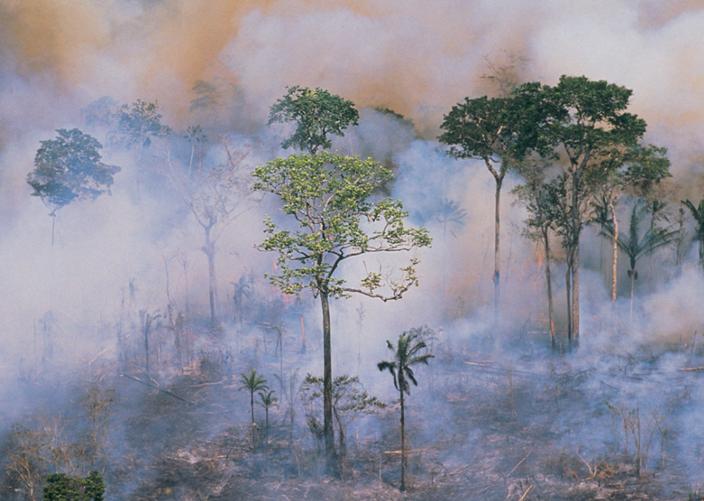 pożar puszczy amazońskiej