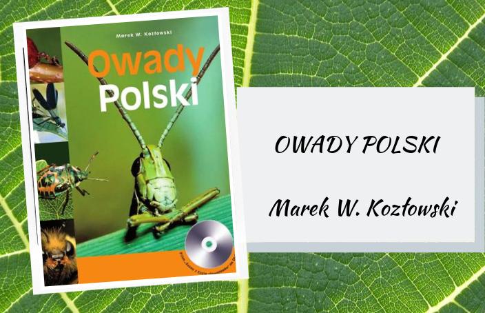 Owady Polski