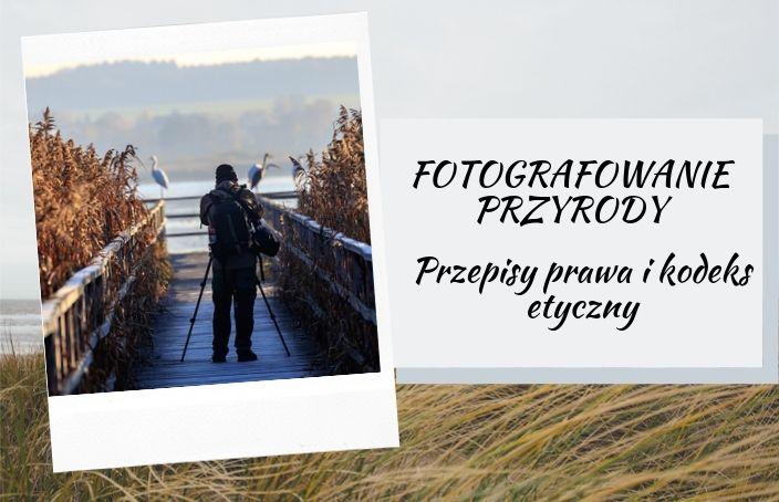 Fotografowanie przyrody - przepisy prawne i kodeks etyczny