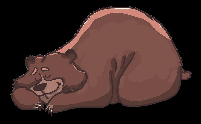 sen-zimowy-hibernacja-torpor-niedźwiedź Sen zimowy, hibernacja, torpor, czyli jak zwierzęta przesypiają zimę
