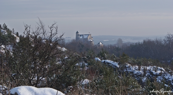 Fotografowanie przyrody zimą - zamek w Bobolicach
