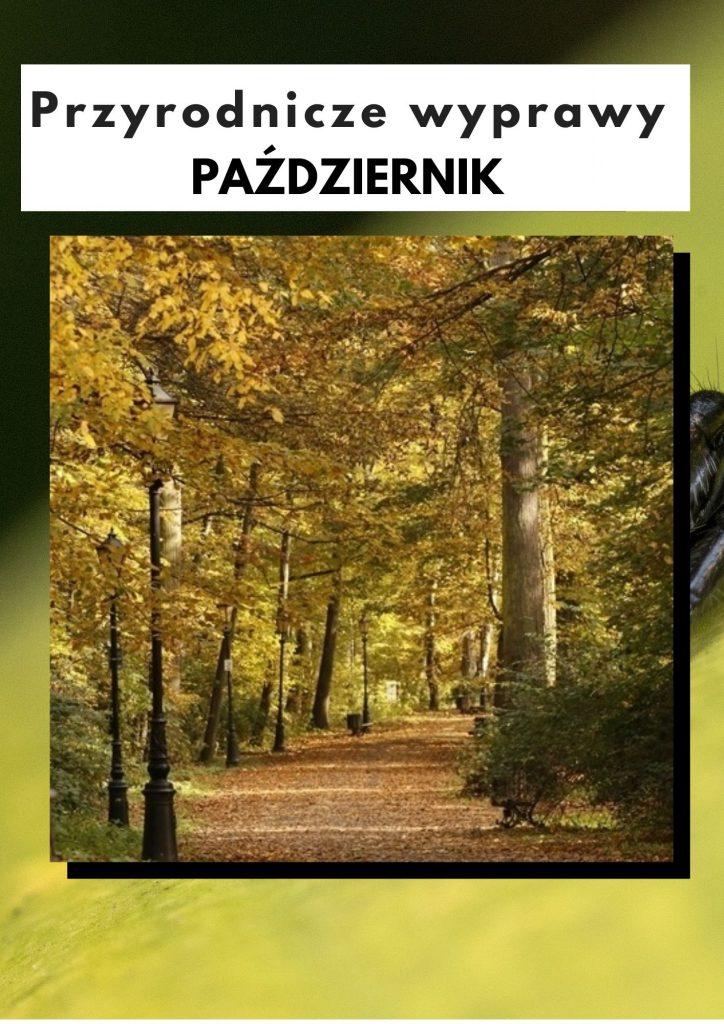Przyrodnicze wyprawy - październik
