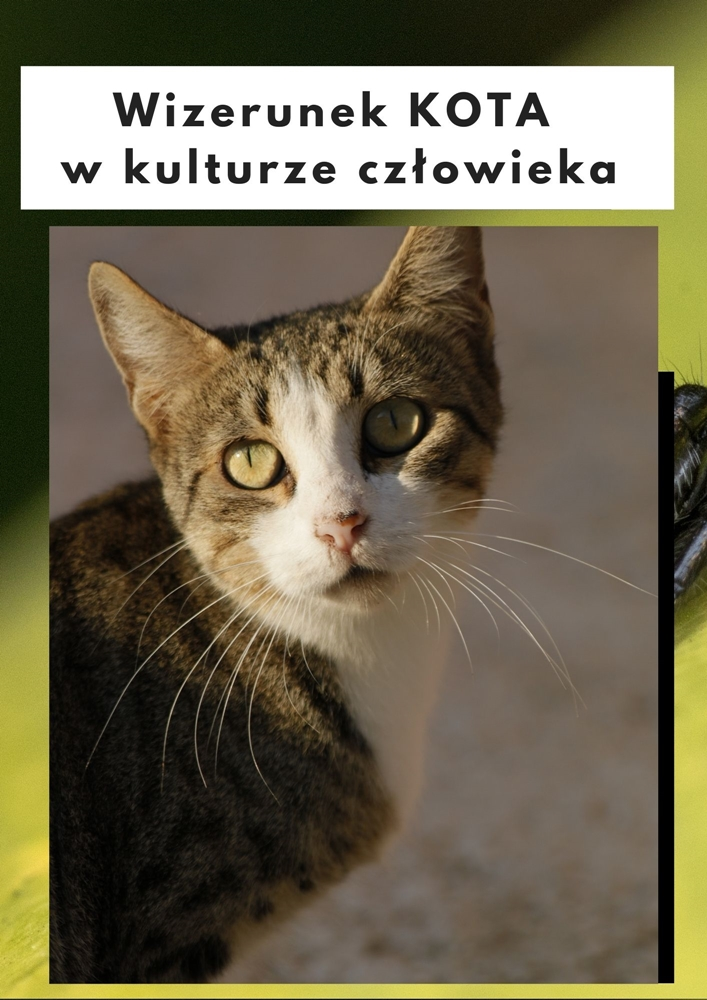 Wizerunek kota w kulturze człowieka