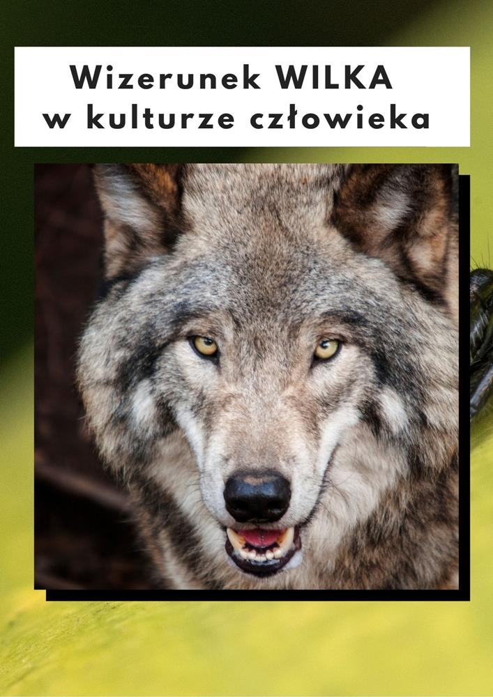 Wizerunek wilka w kulturze człowieka
